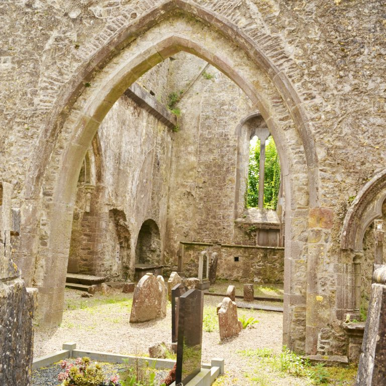 Augustinian Priory Internal Buttevant