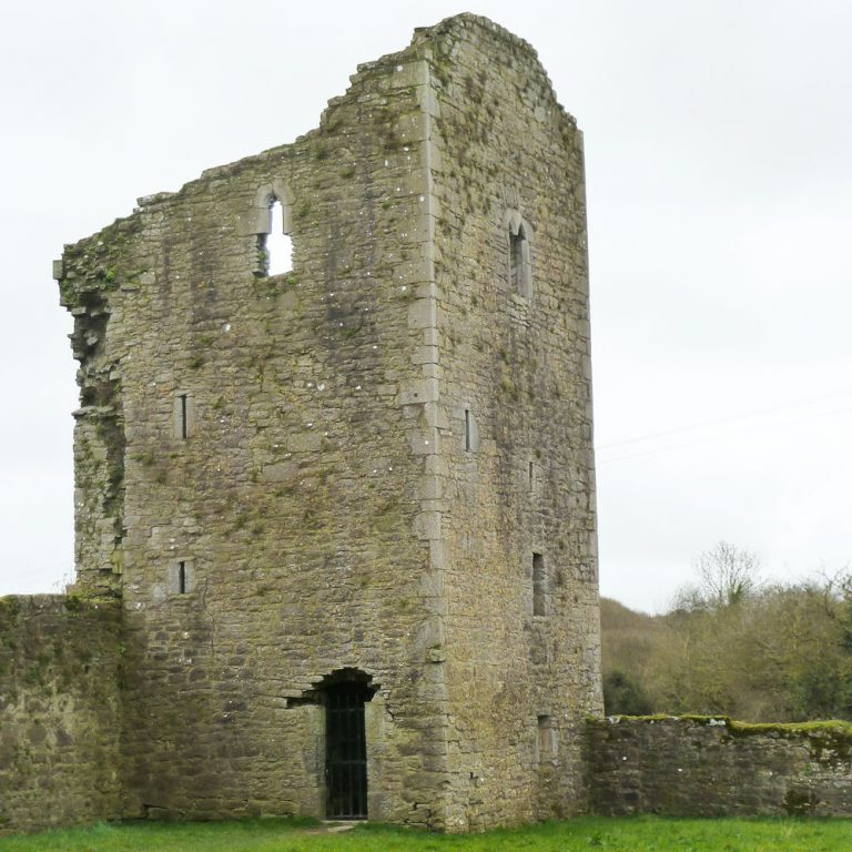 Ballybeg Abbey Tower Buttevant