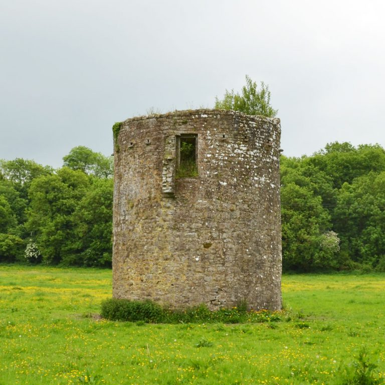 Dovecot Tower Ballybeg Abbey Buttevant