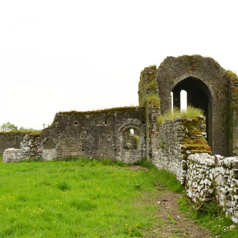 Ballybeg Abbey Buttevant