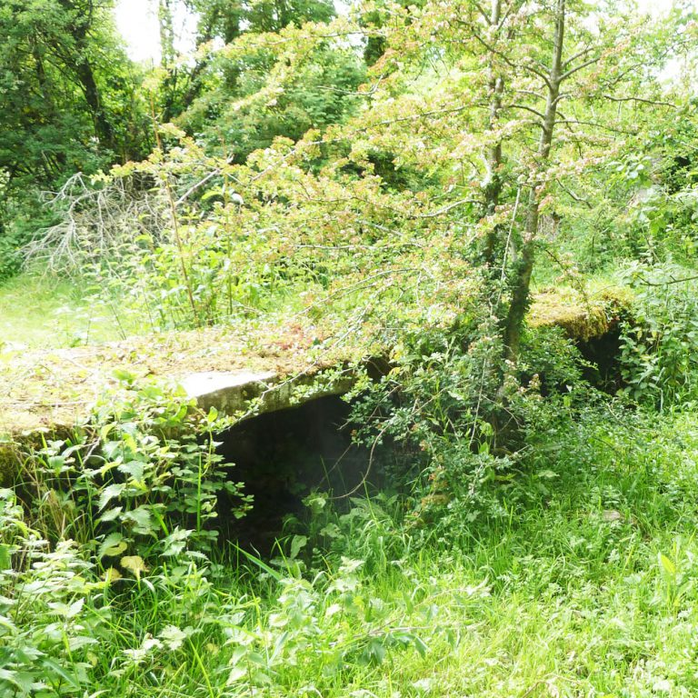 Clapper Bridge Ballybeg Abbey Buttevant