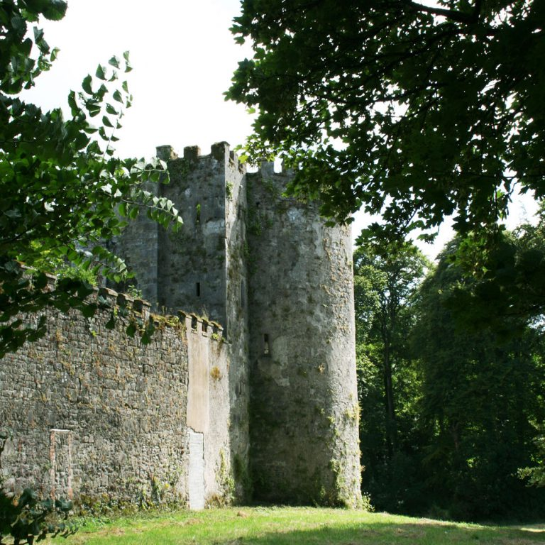 Tower of Barry's Castle Buttevant