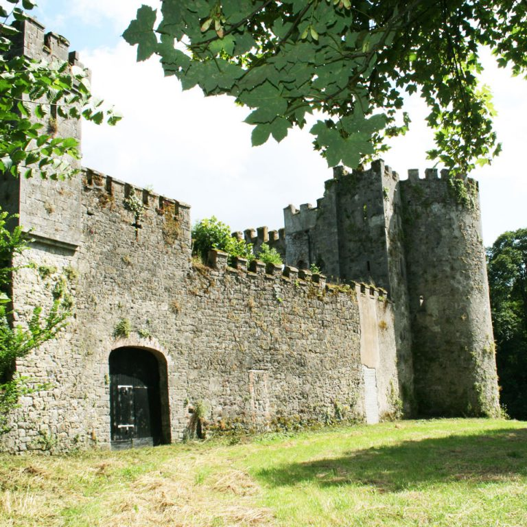 Main Entrance Barry's Castle Buttevant